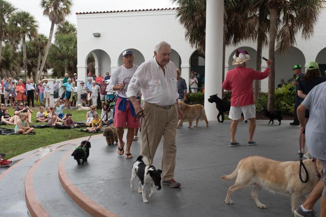 participants showing their dogs